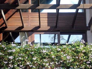pergola ber balkon holz in form pr sentation. Black Bedroom Furniture Sets. Home Design Ideas